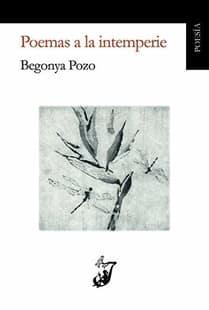 poemas a la intemperie begonya pozo poetas valencianos